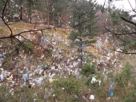 artigas plastikoak 2015-01-30 tx