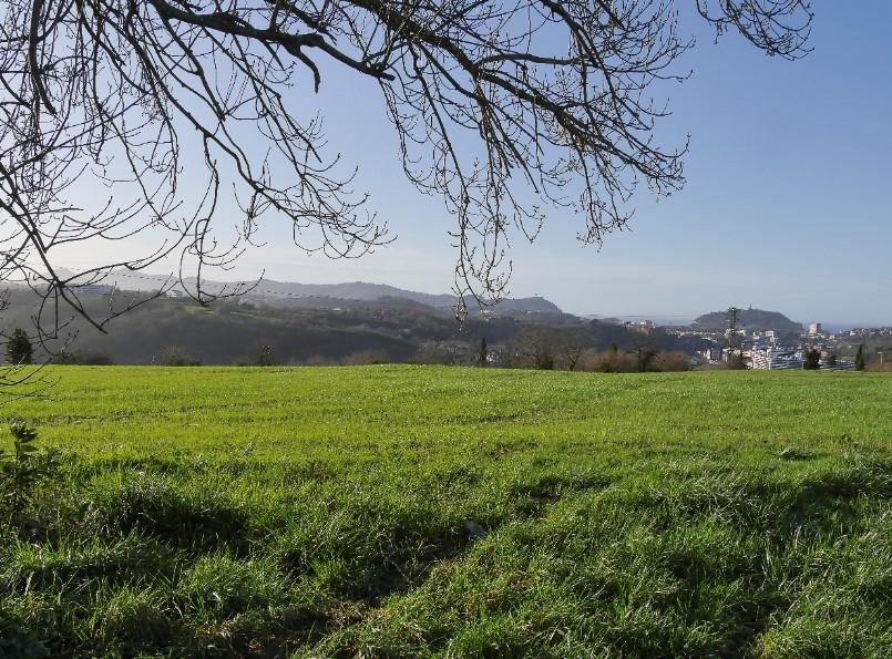Loma de Antondegi y Donostia (1)